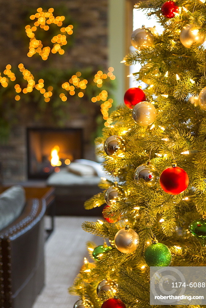Close up of Christmas tree in living room