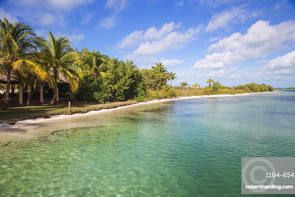 Cayo Largo De Sur, Isla de la Juventud, Cuba, West Indies, Caribbean, Central America