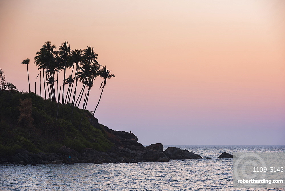 Palm trees silhouetted at Palolem Beach at sunset, Goa, India, Asia
