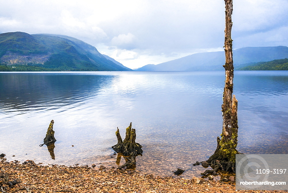 Canoeing Loch Lochy, part of the Caledonian Canal, Fort William, Scottish Highlands, Scotland