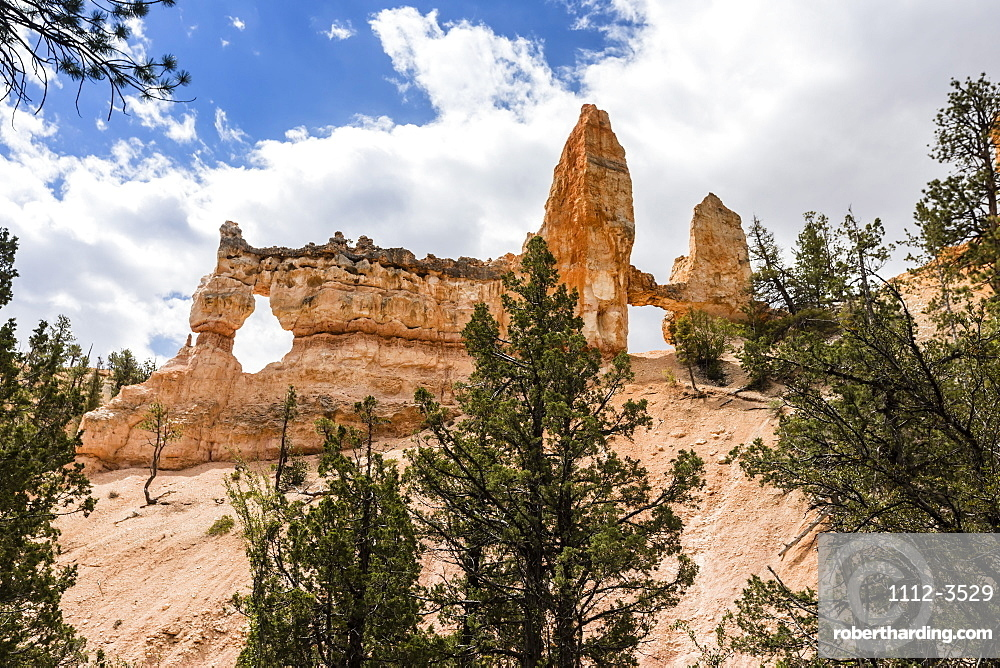 View of Two Towers Bridge from the Fairyland Trail in Bryce Canyon National Park, Utah, United States of America, North America