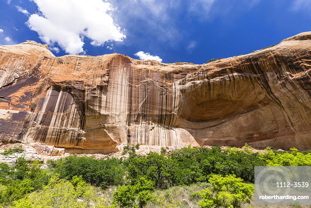Navajo sandstone in Lower Calf Creek Falls Trail, Grand Staircase-Escalante National Monument, Utah, United States of America, North America