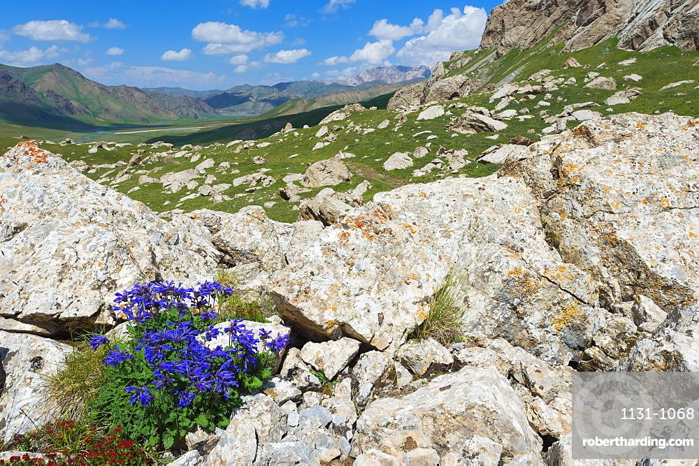 Kurumduk valley, Kel-Suu lake, Naryn province, Kyrgyzstan, Central Asia, Asia