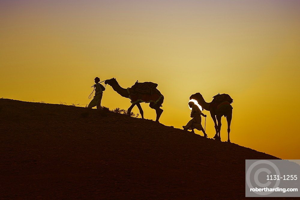 Two Rabari men climbing a dune with their dromedaries at sunset, Great Rann of Kutch Desert, Gujarat, India
