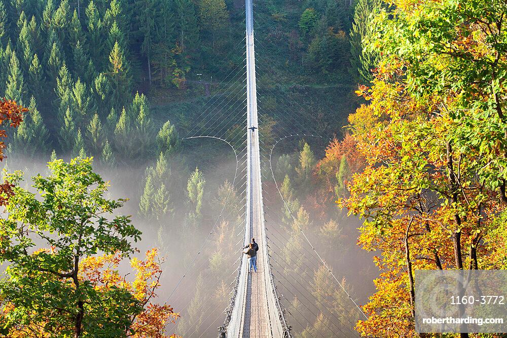 Swing Bridge Geierlay, Moersdorf, Hunsrueck, Rhineland-Palatinate, Germany, Europe
