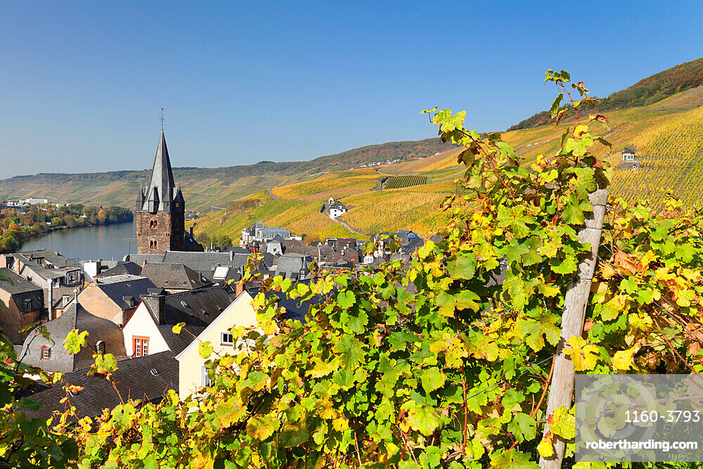 Bernkastel-Kues in autumn, Moselle valley, Rhineland-Palatinate, Germany