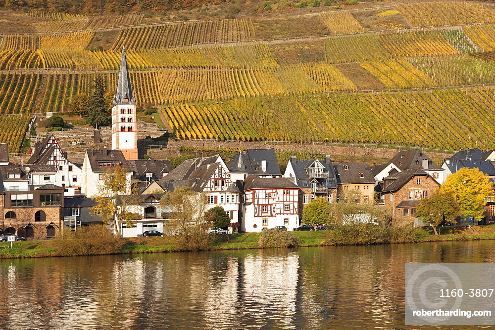 View of Merl district, Moselle Valley, Zell an der Mosel, Rhineland-Palatinate, Germany