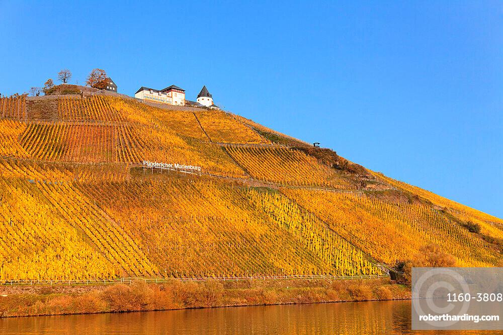 Marienburg Castle, Moselle River, Punderich, Rhineland-Palatinate, Germany, Europe