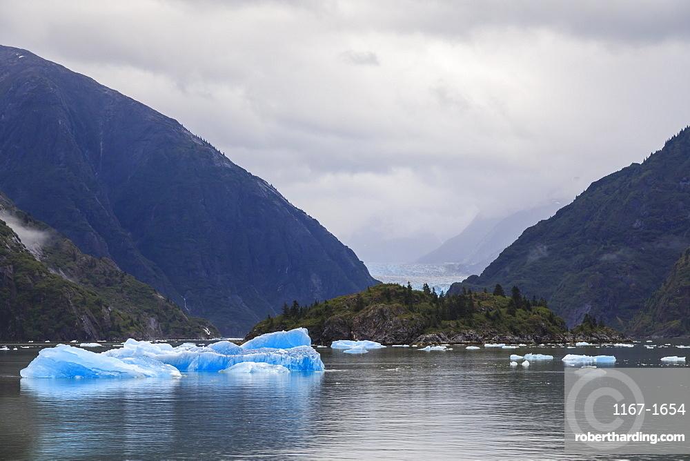 Blue icebergs and face of Sawyer Glacier, mountain backdrop, Stikine Icefield, Tracy Arm Fjord, Alaska, USA