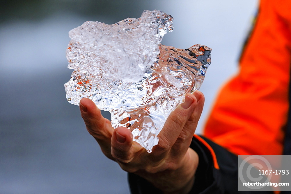 Detail of an expedition passenger holding a piece of glacier ice, Anvers Island, Antarctic Peninsula, Antarctica, Polar Regions