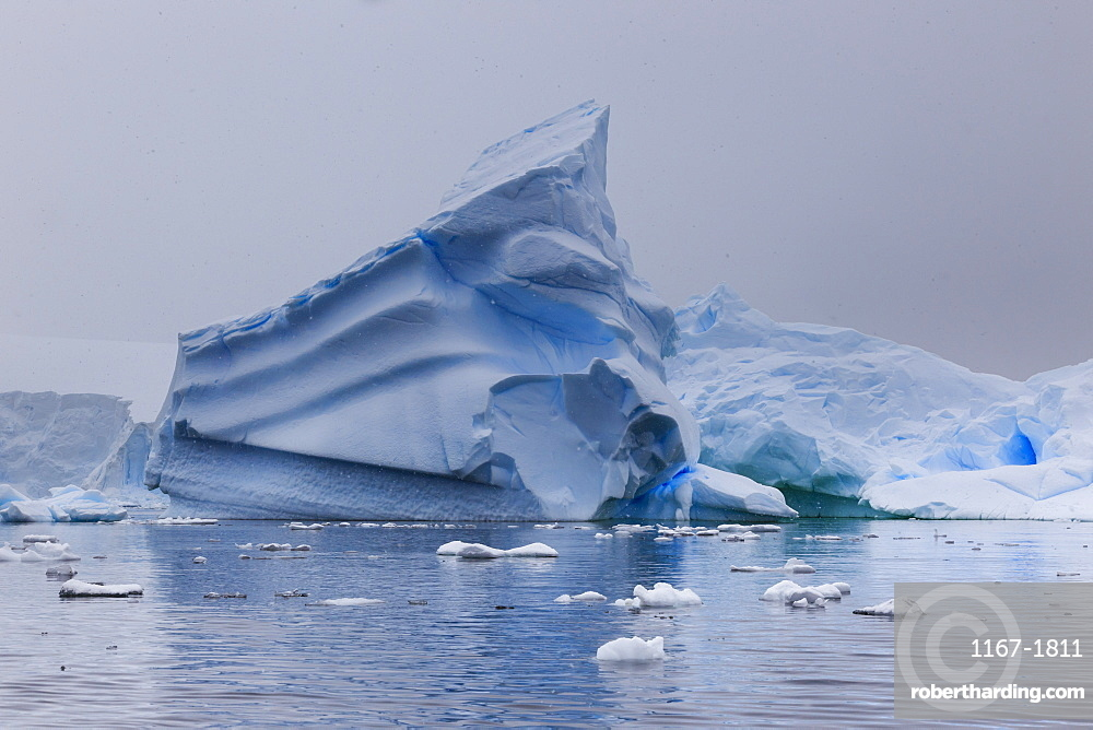 Blue icebergs in snowy weather, from sea level, Waterboat Point, Paradise Bay, Graham Land, Antarctic Peninsula, Antarctica
