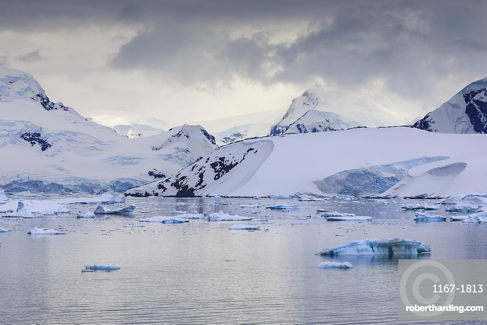 Spectacular mountains, glaciers and blue icebergs of Paradise Bay, water ripples, Graham Land, Antarctic Peninsula, Antarctica
