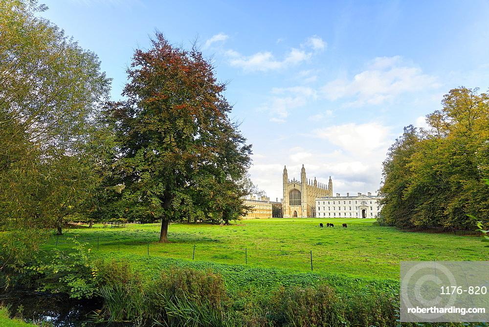 King's College Chapel from the Backs, Cambridge University, Cambridge, Cambridgeshire, England, United Kingdom, Europe