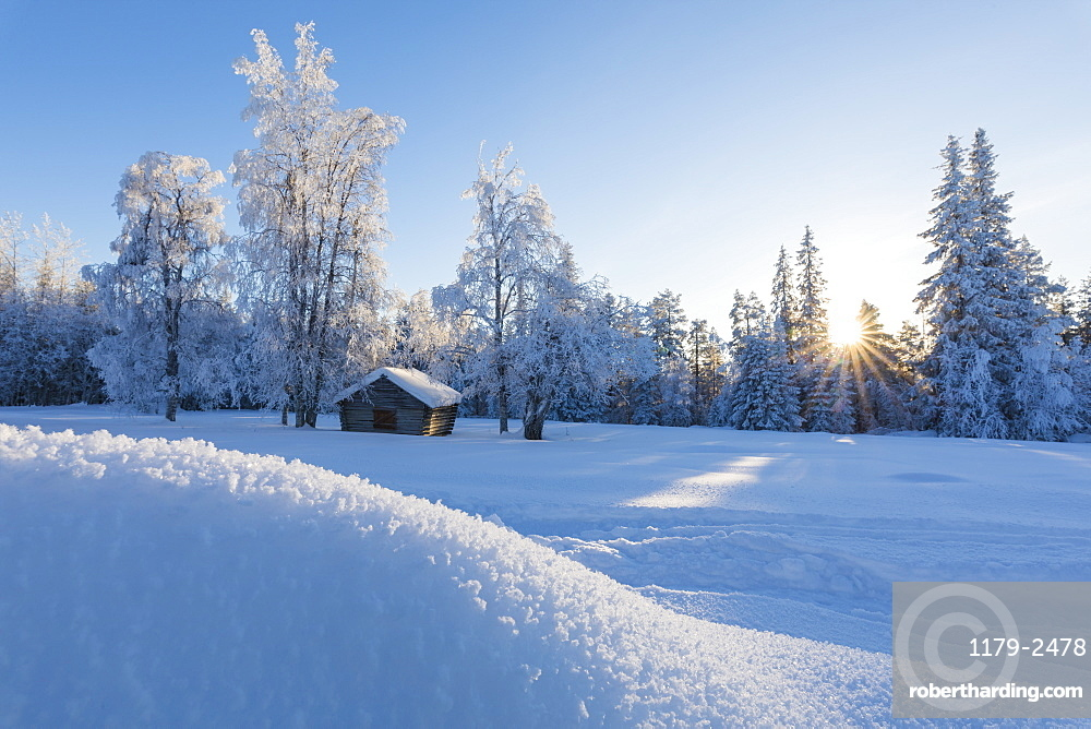 Sunburst on wooden hut in the snowy forest, Kiruna, Norrbotten County, Lapland, Sweden, Scandinavia, Europe