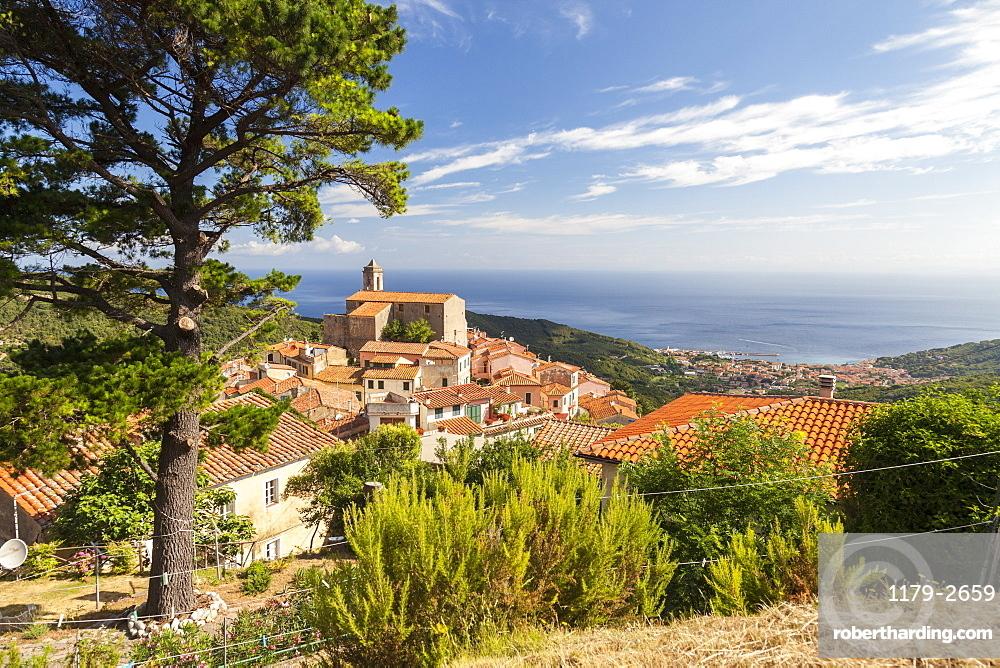 Village of Poggio on the hills of Monte Capanne, Marciana, Elba Island, Livorno Province, Tuscany, Italy, Europe
