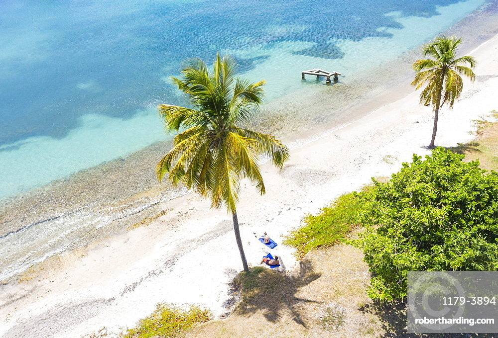 Man and woman relaxing on palm-fringed beach, aerial view by drone, Caribbean Sea, Antilles, West Indies, Caribbean, Central America