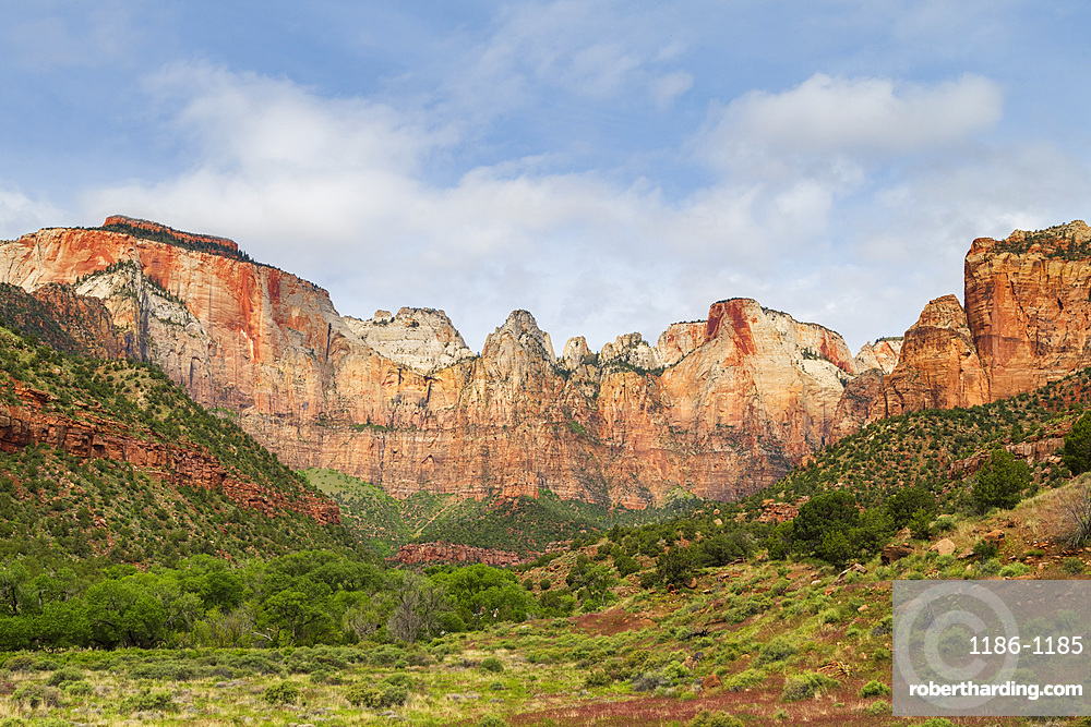 Temples and Towers of the Virgin Zion National Park, Utah, USA, North America