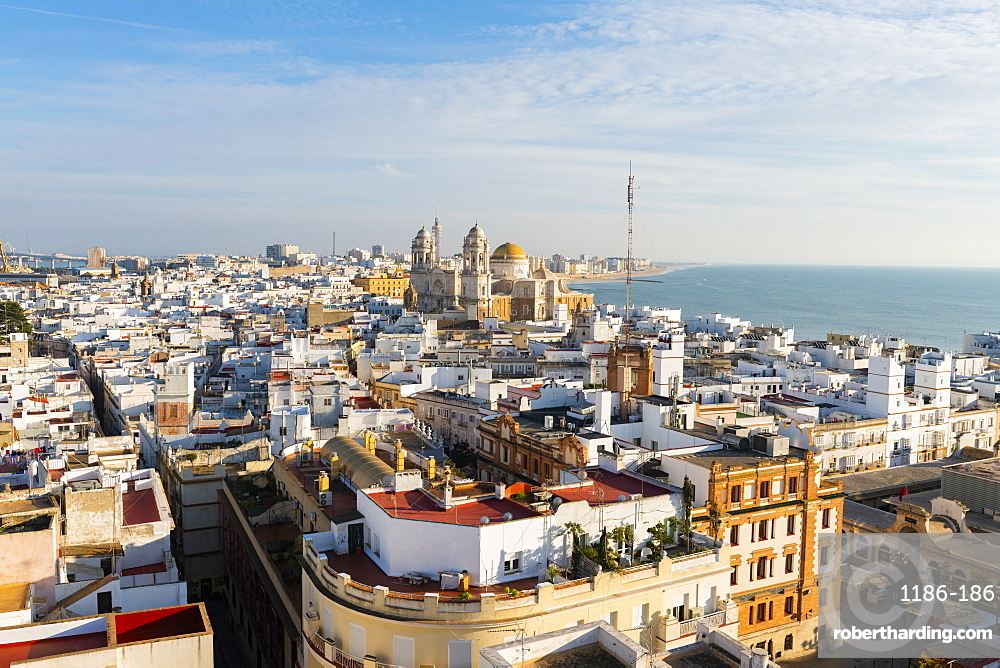 View of the Santa Cruz Cathedral and ocean seen from the Tavira Tower, Cadiz, Andalusia, Spain, Europe