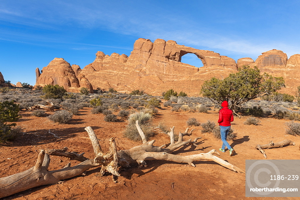 Surprise Arch, Arches National Park, Moab, Utah, United States of America, North America