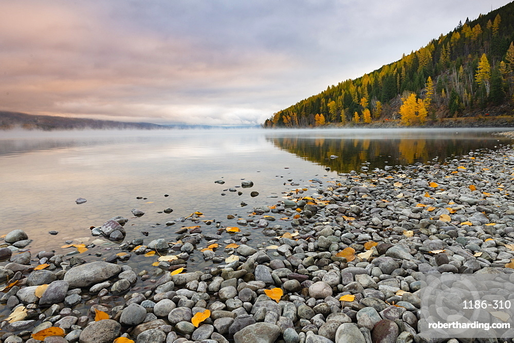 Sunrise on the shore of Lake McDonald Glacier National Park, Montana, USA