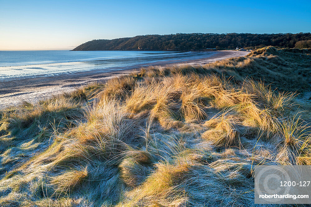 Sand dunes and frost, Oxwich Bay, Gower Peninsula, South Wales, United Kingdom, Europe