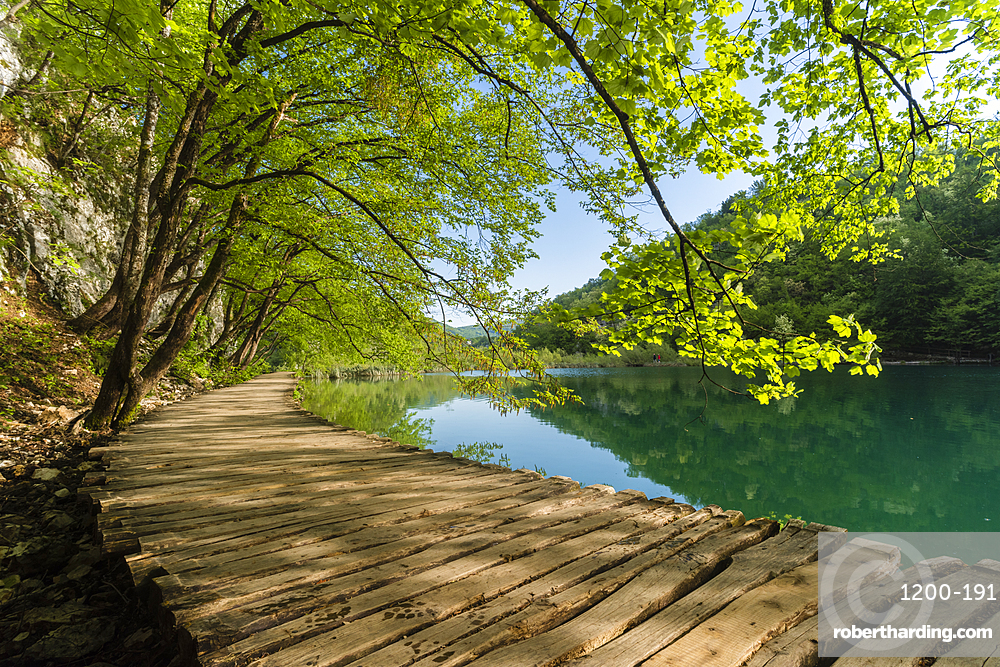 Boardwalk next to lake, Plitvice National Park, Croatia.