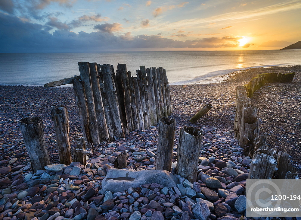 Remains of a wooden groyne at Porlock Weir, sunrise, Somerset, England, Spring