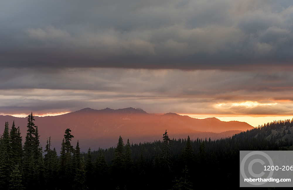 Evening light on mountain peaks, view from Hurricane Ridge, Olympic National Park, Washington, United States.