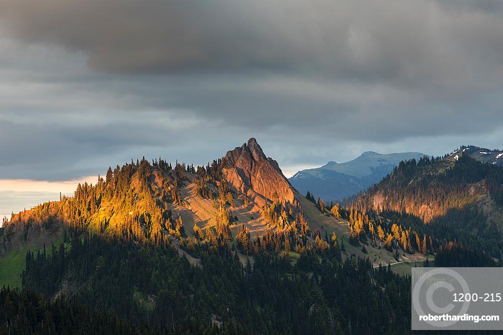 Evening light on mountain peaks, view from Hurricane Ridge, Olympic National Park, Washington, United States.