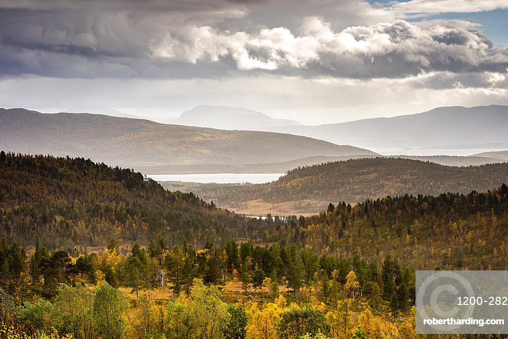 View looking across Anderdalen National Park, Senja, Norway, Scandinavia, Europe