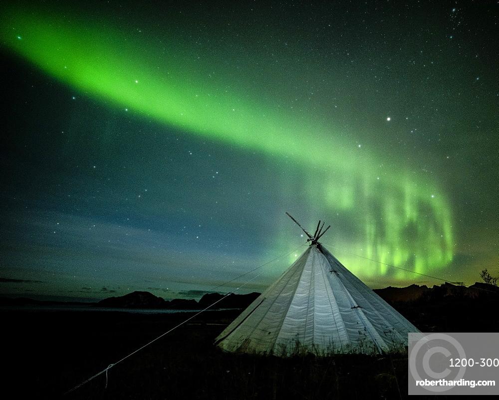 Aurora borealis (Northern Lights) over a traditional Lavvu, Senja, Norway, Scandinavia, Europe