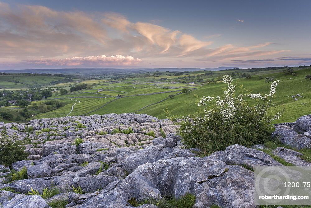 View of limestone pavement, Malham Cove, Malham, Yorkshire Dales National Park, North Yorkshire, England, United Kingdom, Europe