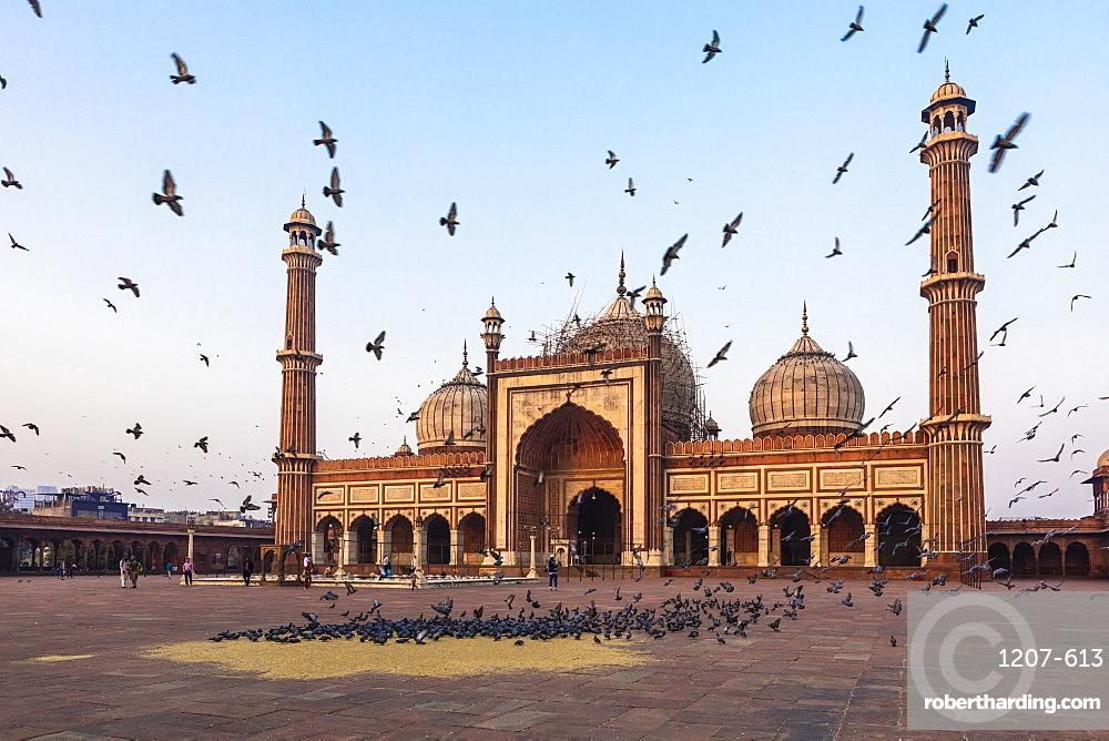 Early morning in Jama Masjid, Old Delhi, India, Asia