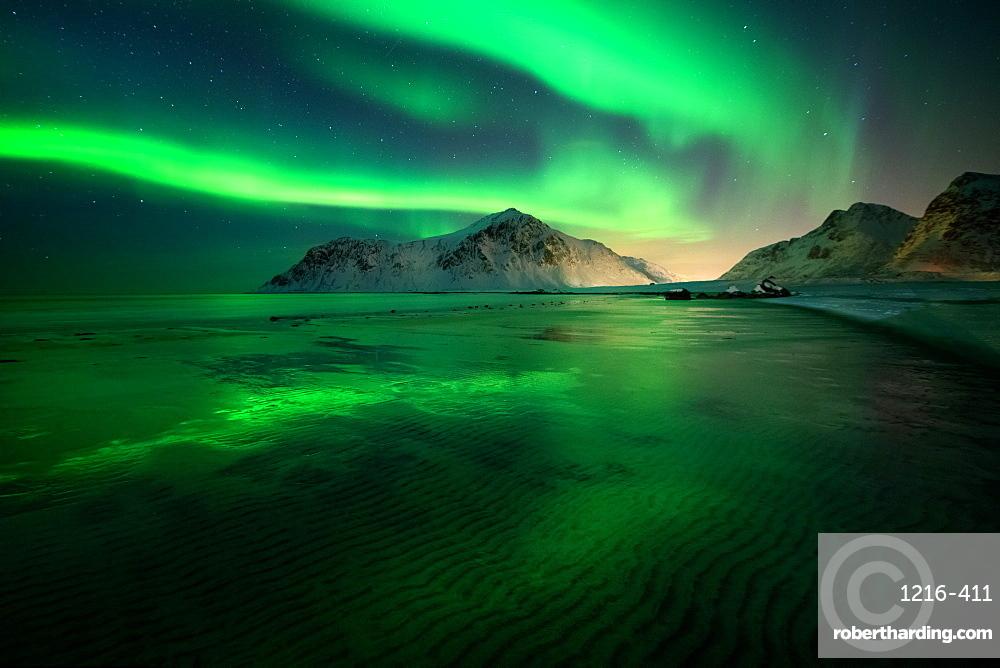Aurora Borealis (Northern Lights) above Flakstad Beach, Lofoten Islands, Nordland, Norway, Europe