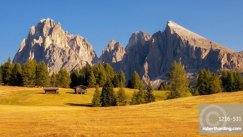 Alpe Di Siusi, Seiser Alm, Dolomites, Italy, Europe