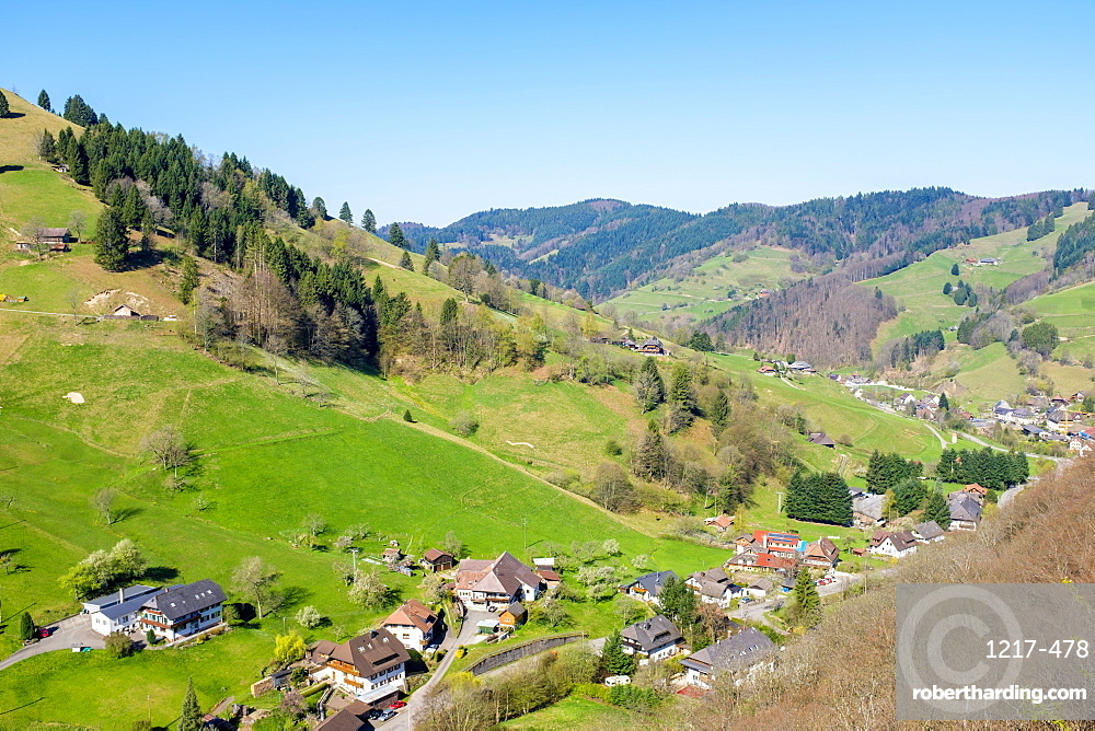 Mountainous landscape in the Upper Munster valley in early spring, Breisgau-Hochschwarzwald, Baden-Wurttemberg, Germany, Europe