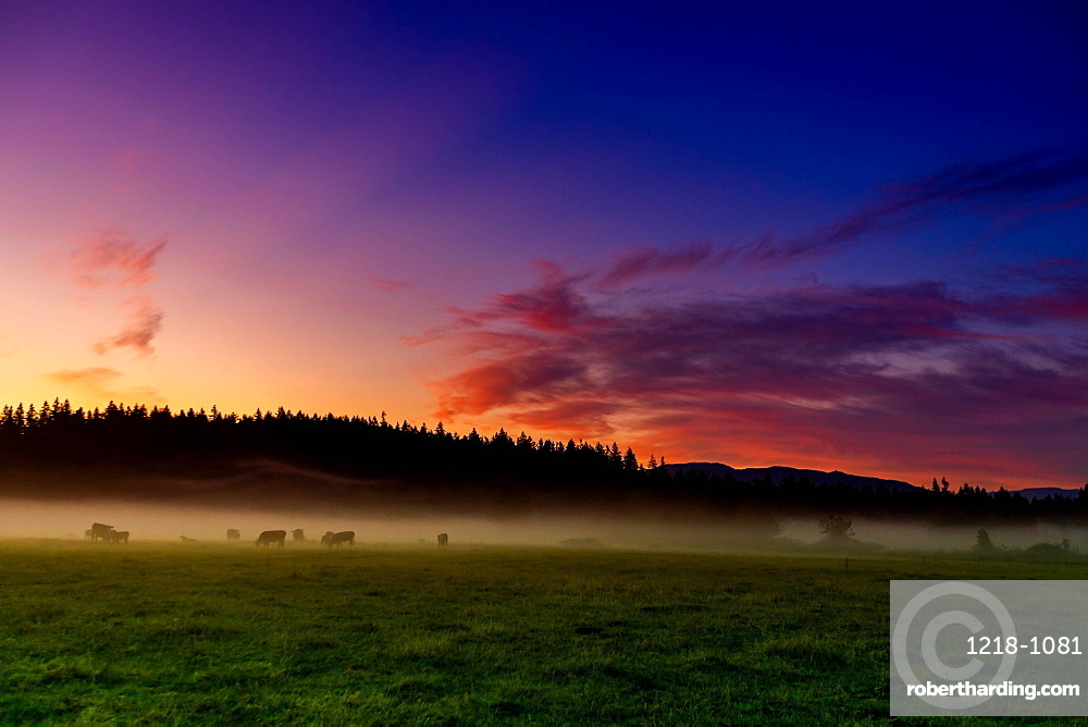 Farmland of Auburn at sunrise.