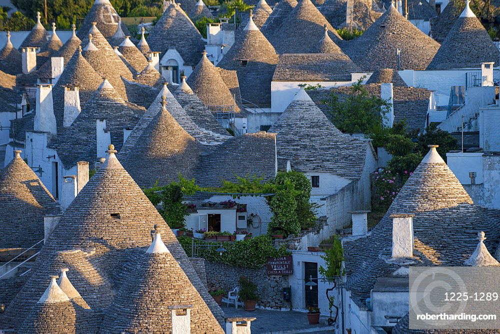 Distinctive conical rooftops of Trulli houses in the town of Alberobello, UNESCO World Heritage Site, Puglia, Italy, Europe