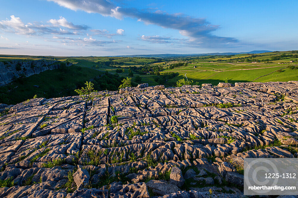 Evening light shows dramatic surface of the famous Limestone Pavement at Malham Cove in the Yorkshire Dales National Park