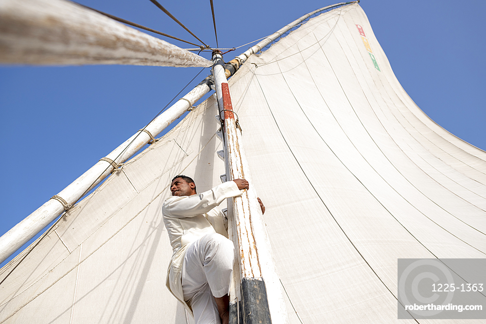 An Egyptian man climbs the mast of a traditional Felucca sailboat with wooden masts and cotton sails on the River Nile, Aswan, Egypt, North Africa, Africa