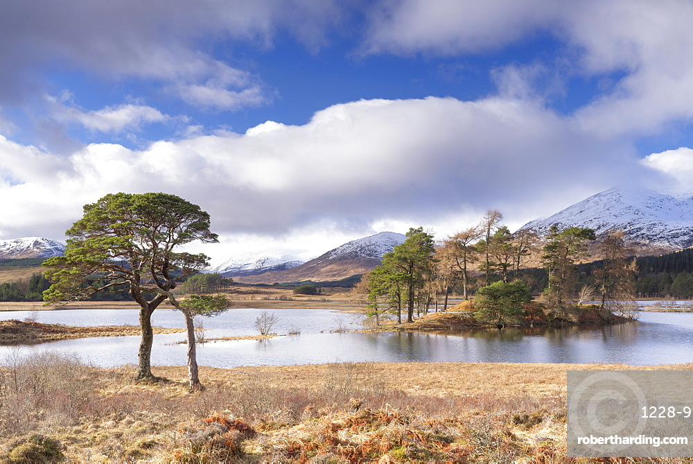 Loch Tulla, Bridge of Orchy, Glencoe, Argyll and Bute, Scotland, United Kingdom, Europe