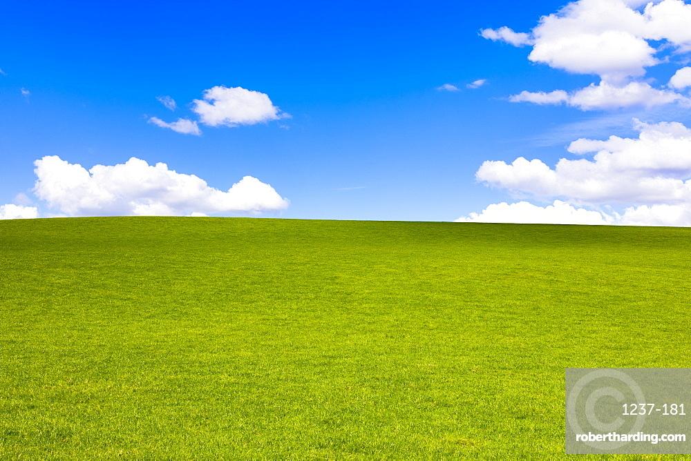 Green field in Perthshire, Scotland, United Kingdom, Europe