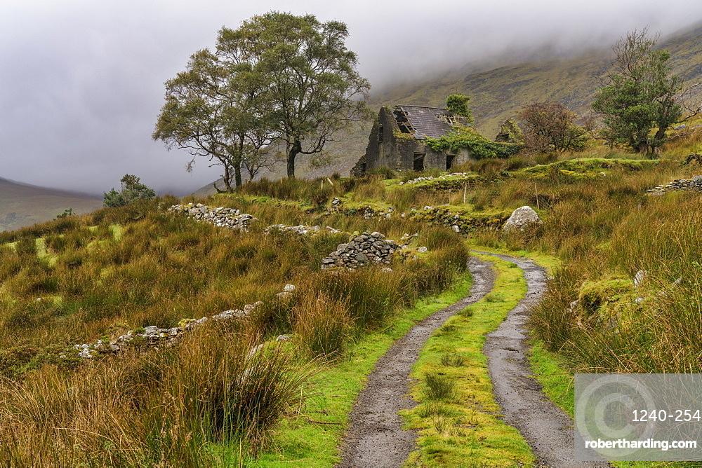 Drumluska, Black Valley, County Kerry, Munster, Republic of Ireland, Europe