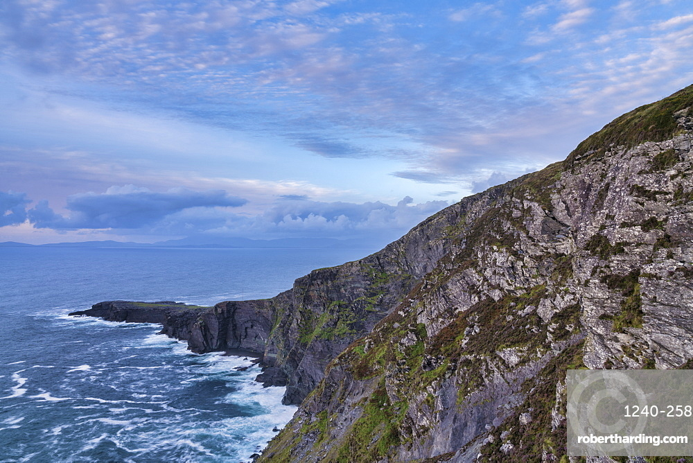 Fogher Cliffs, Valentia Island, County Kerry, Munster, Republic of Ireland, Europe
