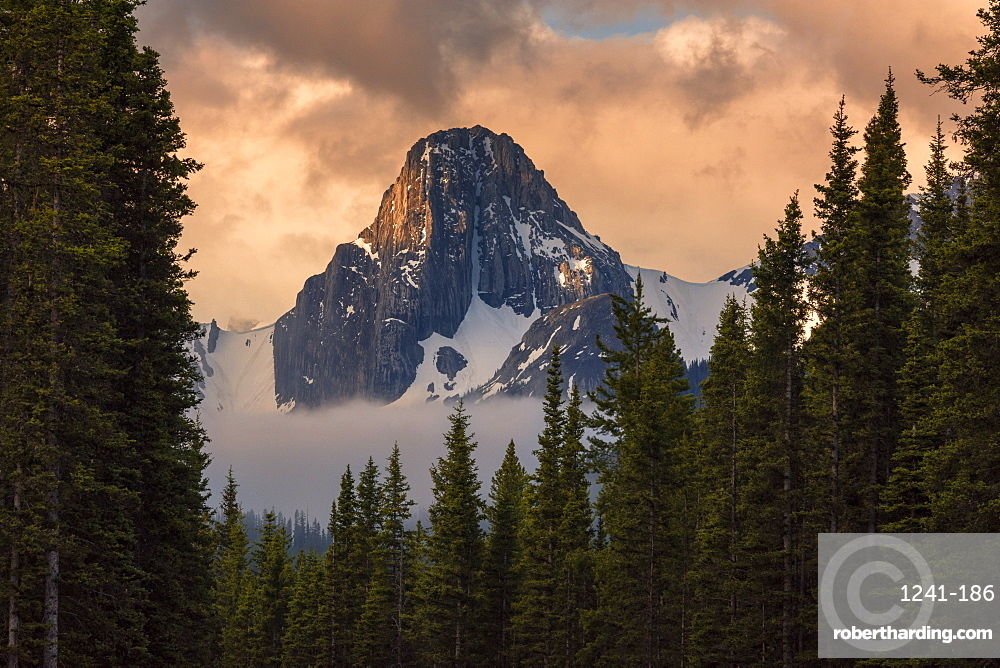Sunrise on the Tower, Mount Engadine, Spray Valley Provincial Park, Alberta, Canada, North America