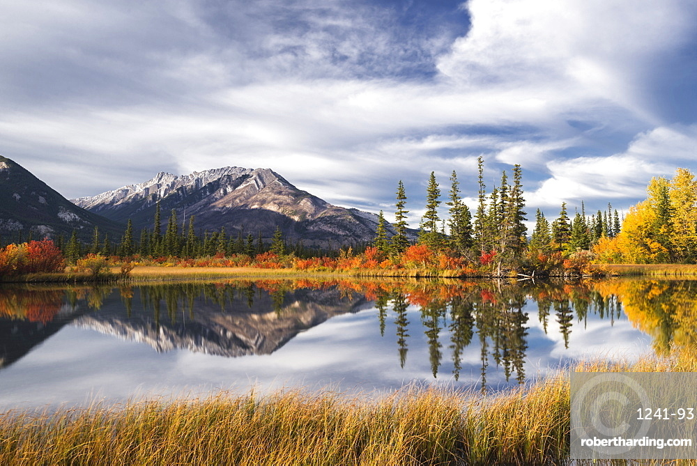 Autumn foliage and mountain lake, Jasper National Park, Canada. mountains, landscape, nature, fall colour, Icefields Parkway