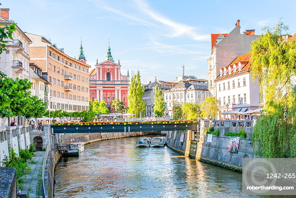 Looking down the Sava River to the pink 17th century Franciscan Church, Ljubljana, Slovenia, Europe