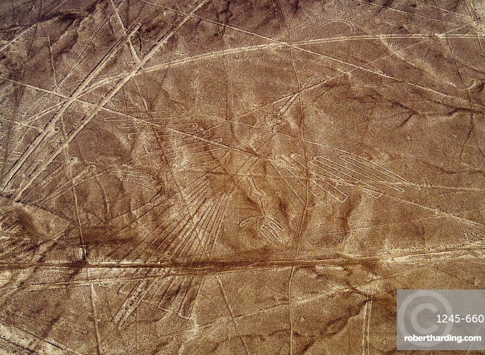 The Condor Geoglyph, aerial view, Nazca, UNESCO World Heritage Site, Ica Region, Peru, South America