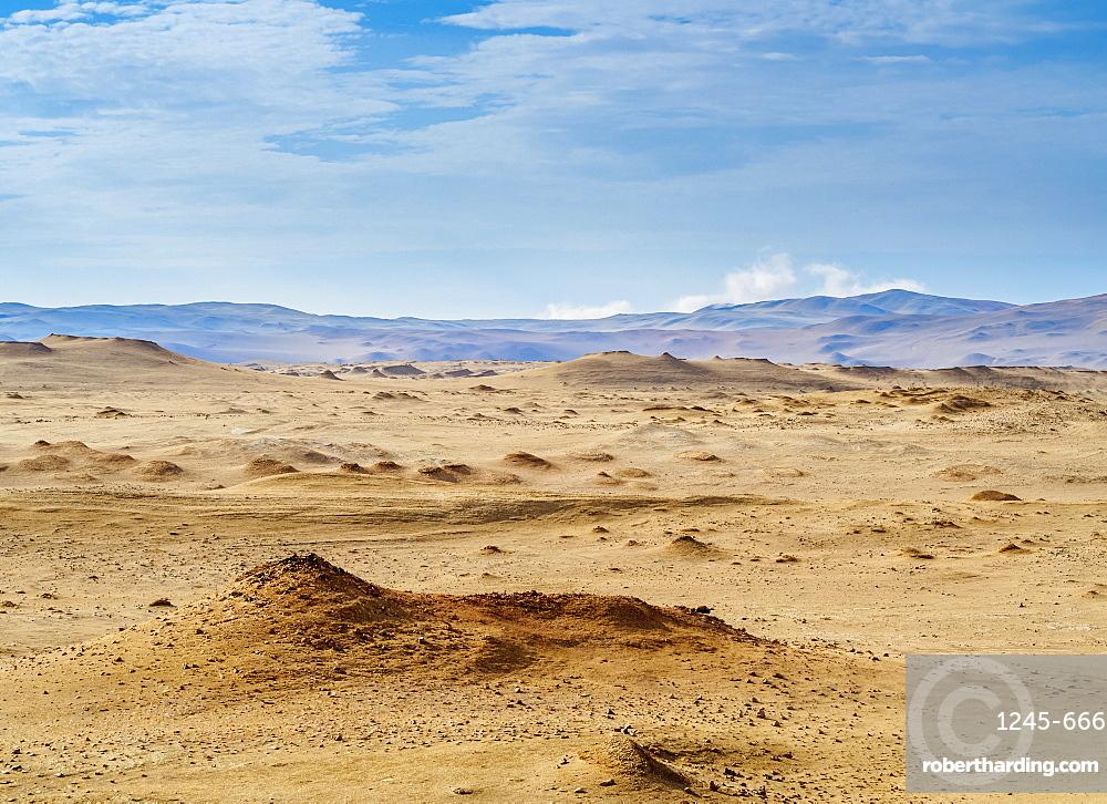 Paracas National Reserve, Ica Region, Peru, South America