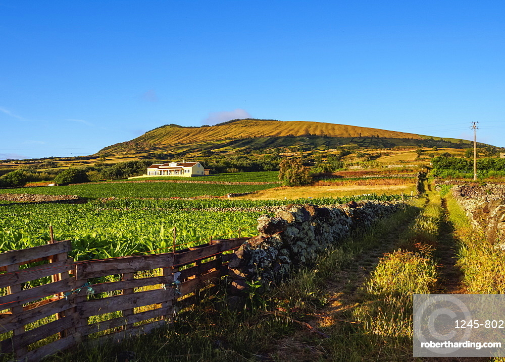 Landscape with Caldeira in the background, Graciosa Island, Azores, Portugal